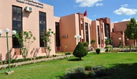 جامعة مولاي اسماعيل