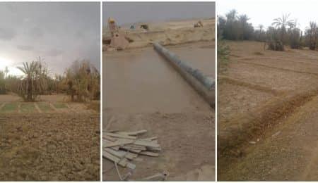 قرية مزرعة تالوين بكلميمة تعاني الجفاف