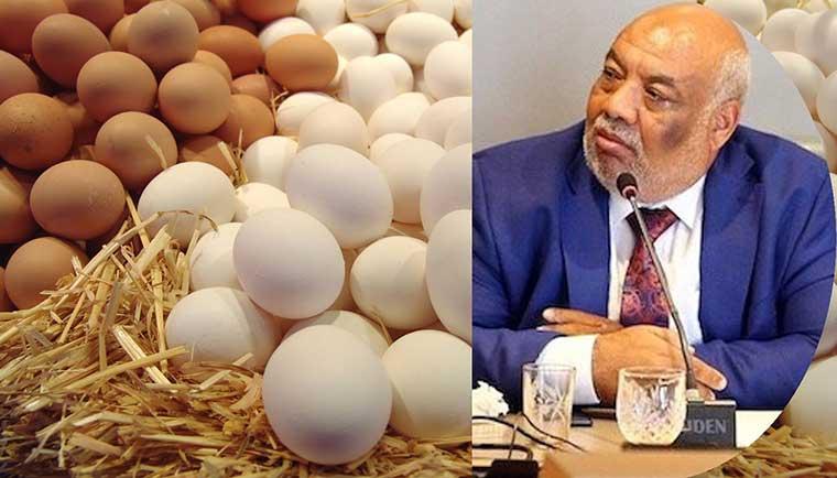 بيض حنان وأديبة