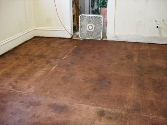 Pdf Birch Plywood Price Plans Diy Free Outhouse Designs