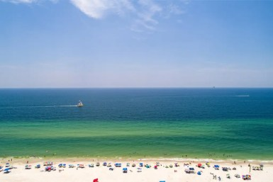 Beaches like Orange Beach, Gulf Shores, Dauphin Island and Fort Morgan in Alabama are spectacular for a number of reasons apart from their pristine sands and clear waters! Read on to see why! #beaches #alabama #summer #travel #ocean #gulf #shores #vacations #summer