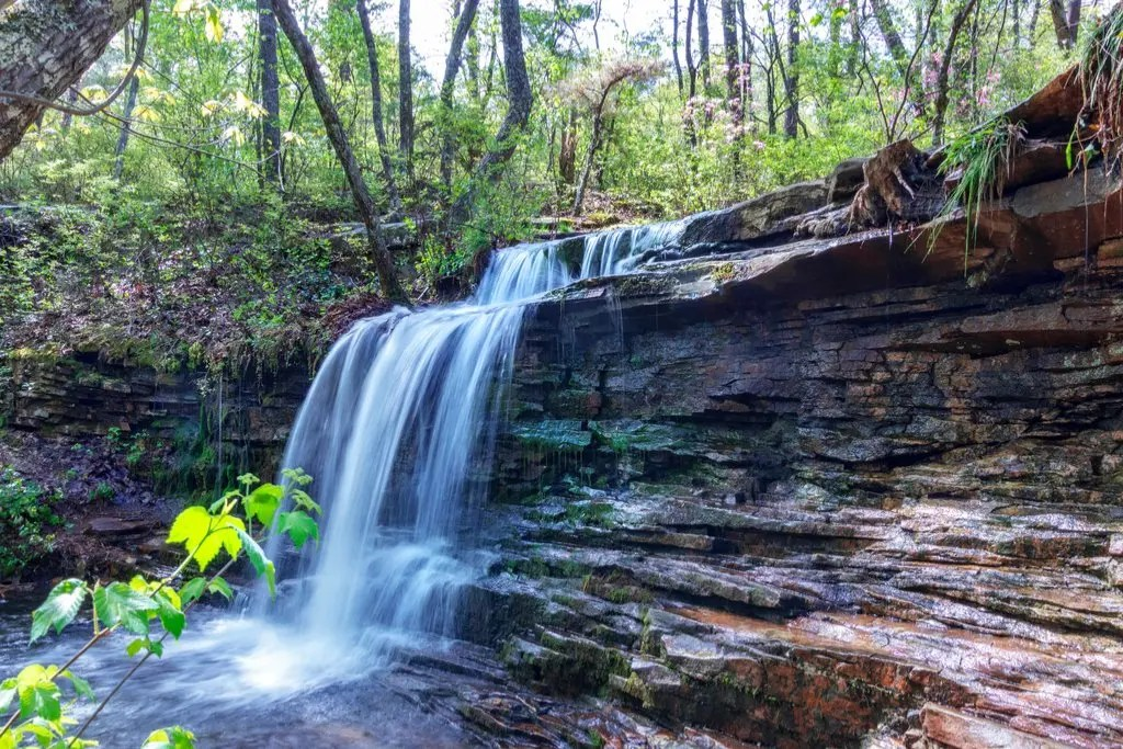 Looking for some outdoor fun and adventure? Visit one of these state parks in Alabama - where all the best ones are! #alabama #stateparks #hiking #camping #outdoors