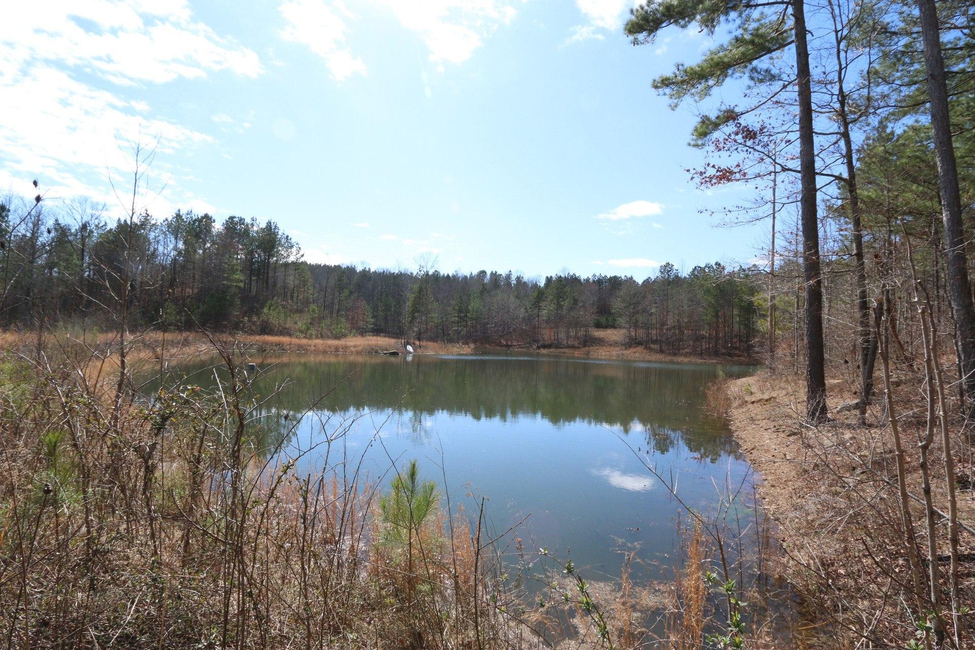 Home - Alabama Land Agent
