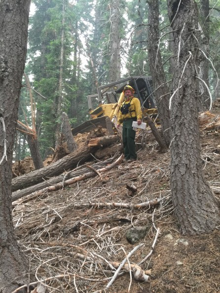 Firefighter Karl Byrd surveys hillside clearing. (contributed)