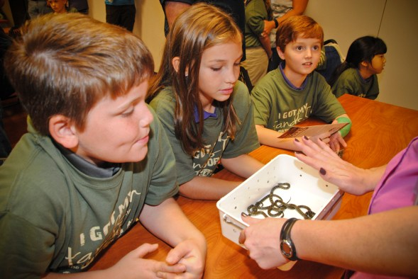 Children learn about snakes at NaturePlex. (Billy Brown/Alabama NewsCenter)