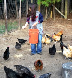 Mandy Davis helps out on the family's hatchery when she's not playing football. (Solomon Crenshaw Jr./Alabama NewsCenter)