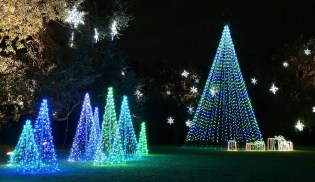 More than 3 million lights will be on display at the Magic Christmas in Lights at Bellingrath Gardens and Home. (Contributed)