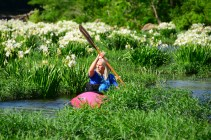 A canoer paddles through Cahaba lilies on the Cahaba River. (Karim Shamsi-Basha/Alabama NewsCenter)