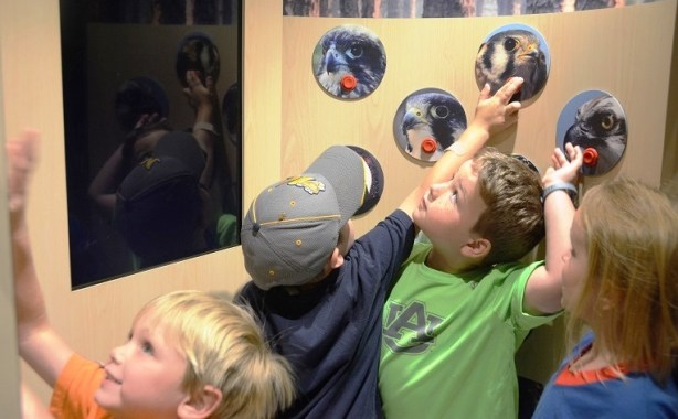 The Alabama Wildlife Federation's Alabama Nature Center and NaturePlex educate schoolchildren and others about the state's diverse wildlife. (Karim Shamsi-Basha/Alabama NewsCenter)