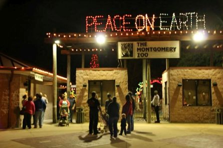 Spend a part of the holiday season at the Montgomery Zoo and Mann Wildlife Learning Museum's 25th Annual Christmas Lights Festival. (Contributed)