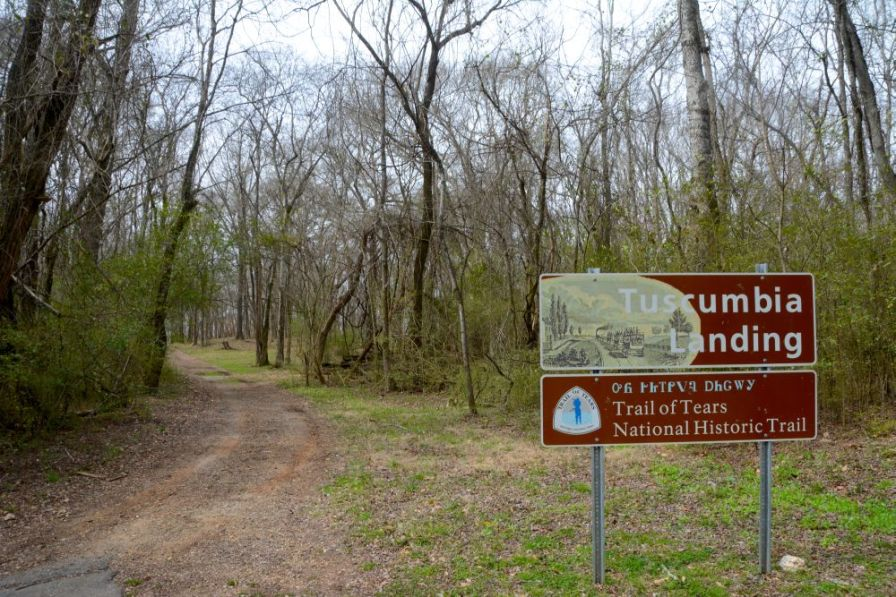 Tuscumbia Landing. Tuscumbia Landing was the westernmost stop along the Tuscumbia, Courtland and Decatur railway. Cherokee were transferred from the railway to boats at the landing. (Karim Shamsi-Basha/Alabama NewsCenter)