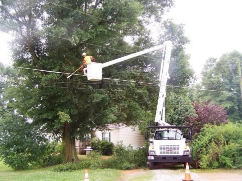 Crews trim trees to keep lines clean of vegetation. (file)