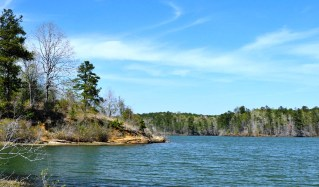 Yates Lake. Since 1994, the Forever Wild program has been involved in the purchase and preservation of 188,000 acres in Alabama. (contributed)