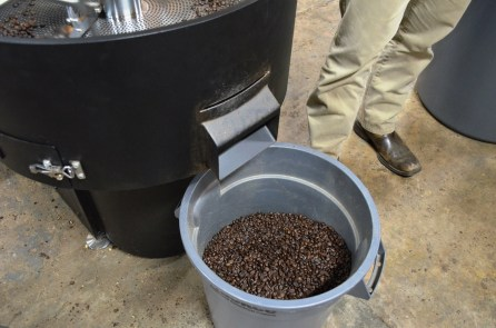 Beans are extracted from the roaster at Revival Coffee. (Michael Tomberlin / Alabama NewsCenter)