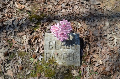 Colorful silk flowers decorate most of the graves at the Coon Dog Cemetery. (Anne Kristoff / Alabama NewsCenter)
