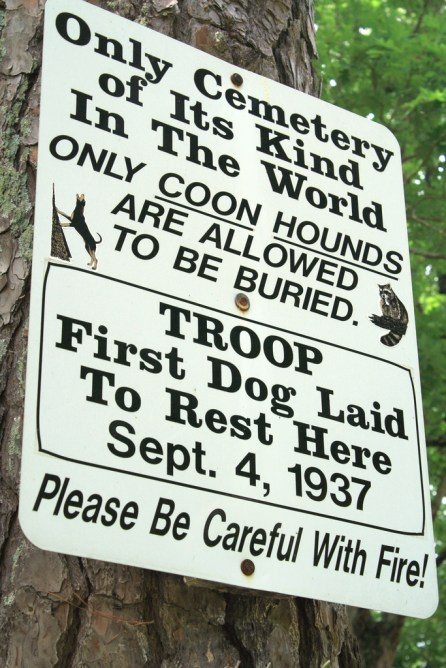 Signage at the Key Underwood coon dog cemetery. (Terri, Flickr)