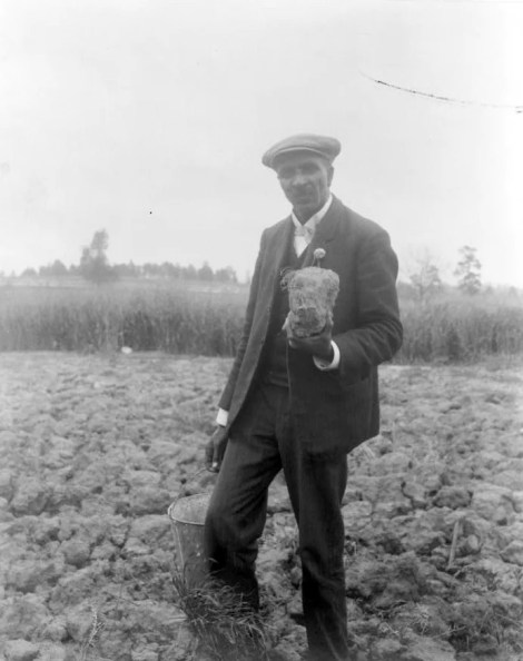 George Washington Carver, standing in field, probably at Tuskegee, holding piece of soil, 1906. (Photograph by Frances Benjamin Johnston, Library of Congress Prints and Photographs Division)