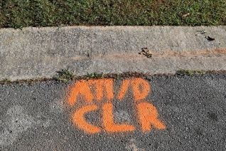 The 'all clear' sign shows it's safe to plant trees. (Donna Cope/AlabamaNewsCenter)