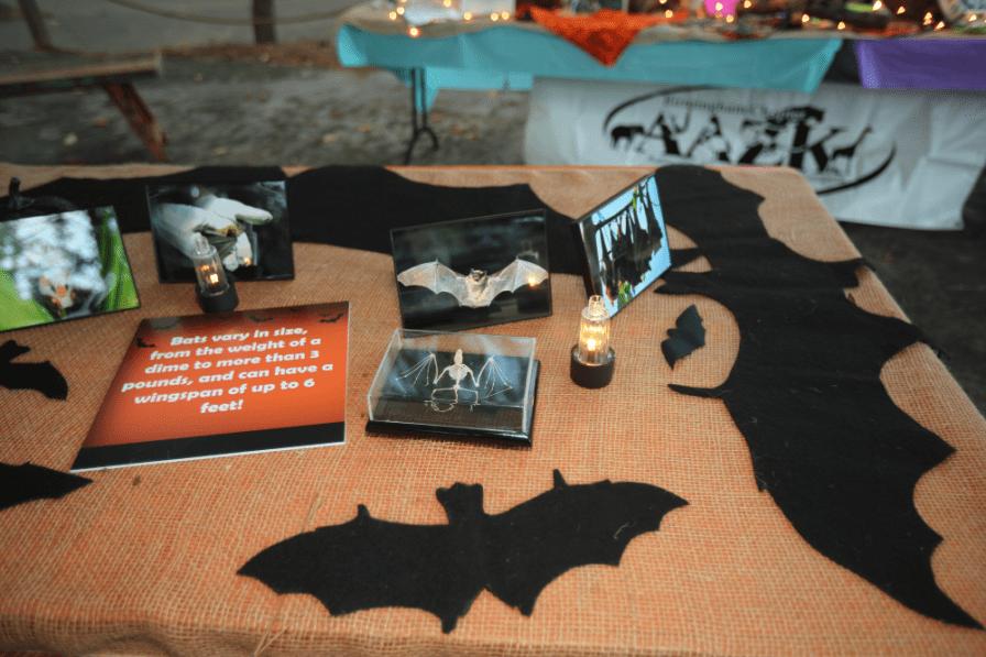 Bat display at the 2017 Boo at the Zoo (Meg McKinney)