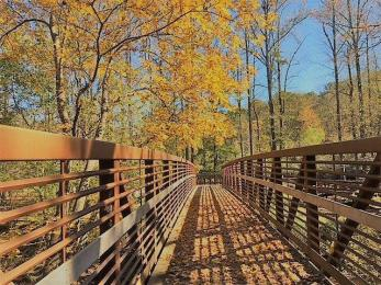 Cool temperatures and colorful foliage are some of the things to love about fall in Alabama. (Erin Searson / Alabama NewsCenter)