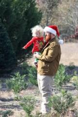 Cason Jordan and his daughter Kayleigh watch as Murphy's Christmas Tree Farm employees cut their tree. (Robert DeWitt / Alabama NewsCenter)