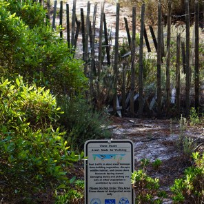Audubon Bird Sancuary, Dauphin Island. (Erin Harney/AlabamaNewsCenter)