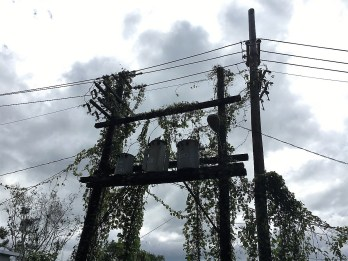 Hurricane Maria knocked out power to Puerto Rico four months ago and the terrain, vegetation and aged infrastructure has made restoration difficult in many areas. (Southern Company)