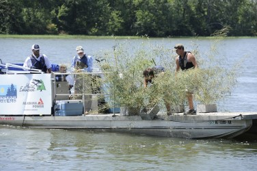 Alabama Power will install fish habitats on Neely Henry and Smith lakes this spring. (file)