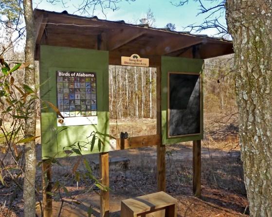 Kreher bird observation area. (Copyright © Lew Scharpf)
