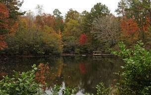 Pond at the Kreher Nature Preserve. (Copyright © Lew Scharpf)