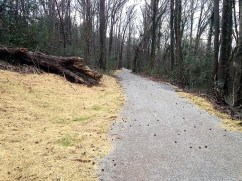 The newly renamed Kiwanis Vulcan Trail now extends 2.2 miles to the west to Green Springs Highway, more than twice its original length. (Michael Sznajderman/Alabama NewsCenter)