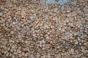 Roasted coffee beans cool at Southern Girl Coffee Co. (Michael Tomberlin / Alabama NewsCenter)