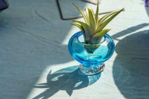 Heather Hepp loves playing with colors and shapes in her work at Little Sandy Glass. (Mark Sandlin / Alabama NewsCenter)