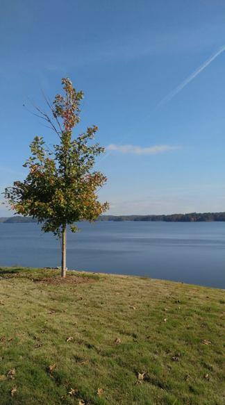 Alabama shows its natural splendor in the fall. (Barbara VanPelt)