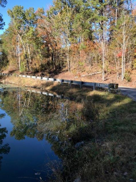 Fall colors are reflected in the water in Lake View, Alabama. (Michael Tomberlin / Alabama NewsCenter)