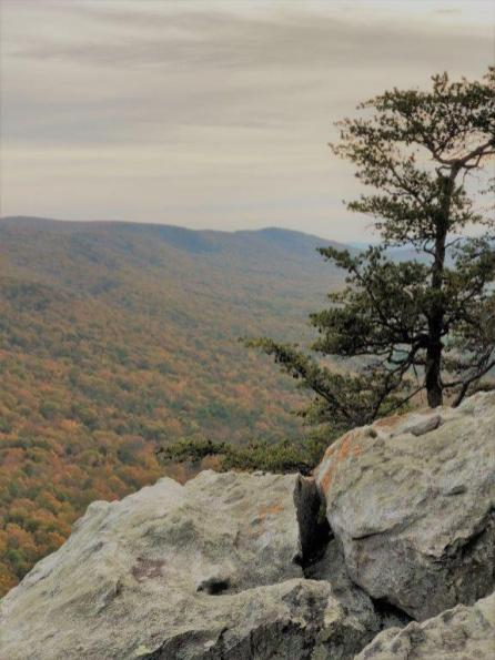 McDill Point at Cheaha Trailhead is one of the best places to get an overhead view of the natural beauty of Alabama in the fall. (Nicholas Turner)