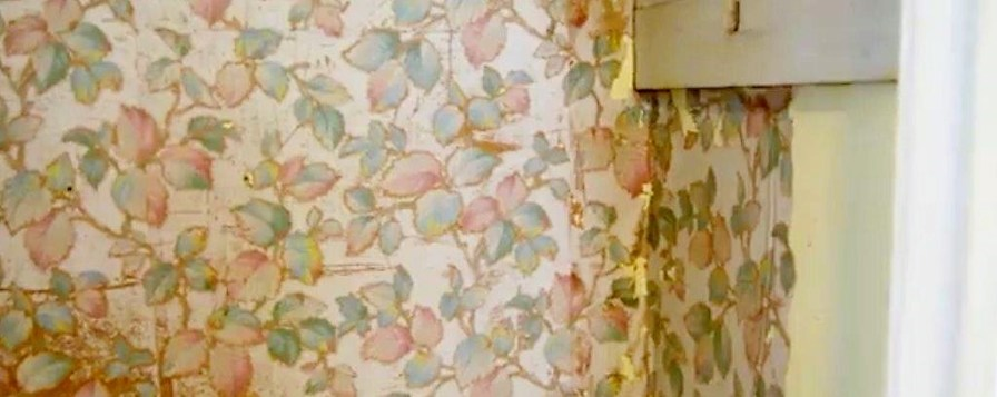 Newly discovered wallpaper at the F. Scott and Zelda Fitzgerald Museum dates from the time the celebrity literary couple lived in the house that is now the only museum devoted to them. (Karim Shamsi-Basha / Alabama NewsCenter)