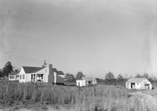 Gardendale homesteads, 1937. (Photograph by Arthur Rothstein, Library of Congress, Prints and Photographs Division)