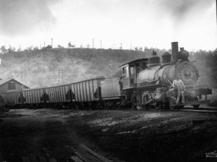 A train hauls coal from the Warrior Coal Field outside Birmingham. The large coal reserves in the district sparked railroad construction and industrial development throughout northern Alabama. (From Encyclopedia of Alabama, photograph by O.V. Hunt, courtesy of Birmingham Public Library Archives)