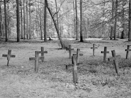 Historic Blakeley State Park, 2010, scene of the last major battle of the Civil War. (The George F. Landegger Collection of Alabama Photographs in Carol M. Highsmith's America, Library of Congress, Prints and Photographs Division)