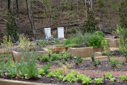 The hives are at the back of gardens created by Father Nature Landscapes. (Donna Cope/Alabama NewsCenter)