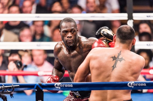 Deontay Wilder knocked out Eric Molina in the ninth round in June at sold-out Bartow Arena in Birmingham. (Nik Layman/Alabama NewsCenter)
