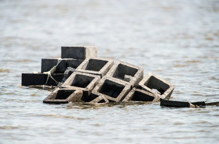Thirty-five-pound concrete blocks are connected to form an oyster castle reef at the edge of Mobile Bay. (Alabama Power Foundation)