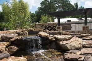 The virtual zoo includes signature camp programs, a tour of the grounds, behind-the-scenes areas, lessons about animals and more. (Brittany Dunn/Alabama NewsCenter)
