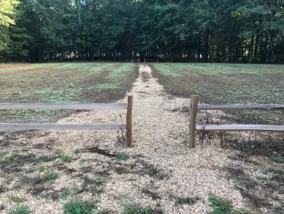 A site at Beeswax Park on Lay Lake is planted with buckwheat as a base for a variety of seed being planted through October to create a pollinator plot. (Shorelines)