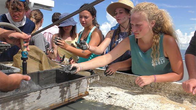 Alabama's Dauphin Island Sea Lab teaches more than science