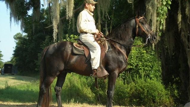 Alabama Legacy Moment: McCurdy Plantation Horse