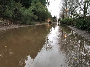 Storms caused damage across the state, including flooding in Birmingham's Forest Park neighborhood. (Michael Sznajderman / Alabama NewsCenter)