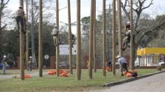 Bishop State Community College will now be joined by Jefferson State Community College and Lawson State Community College to offer lineworker training programs. (Dennis Washington / Alabama NewsCenter)