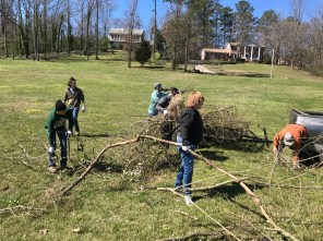 Volunteers remove privet, brush and some trees from the area around Glenn Springs to improve the habitat of the endangered watercress darter. (Michael Sznajderman/Alabama NewsCenter)
